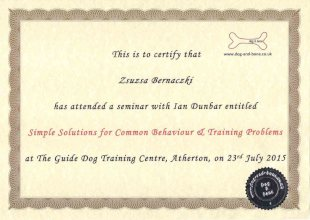 This is to certify that Zsuzsa Bernaczki has attended a 2 day seminar with Ian Dumbar entitled Simple Solutions for Common Behaviour and Training Problems at The Guide Dog Training Centre, Atherton, on 23rd July 2015