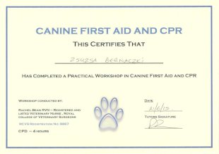 Canine First Aid and CPR, This Certifies That Zsuzsa Bernaczki Has Completed a Practical Workshop in Canine First Aid and CPR, Workshop Conducted by Rachel Bean RVN - Registered and Listed Veterinary Nurse, Royal College of Veterinary Surgeons, RCVS Registration No: 8867, CPD - 4 hours, Date 21/6/15, Tutors Signature