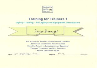 Training for Trainers 1, Agility Training - Pre Agility and Equipment Introduction, Zsuzsa Bernaczki Has Attended a Weekend Training Course Covering: Setting up and Running Agility Classes from Pre Agilityto Introduction of Equipment Training Techniques and Best Practices Health and Safety Issues, Date: 14th September 2014, Signed