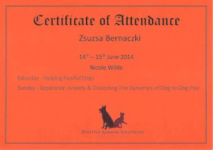 Certificate of Attendance, Zsuzsa Bernaczki, 14th - 15th June 2014, Nicole Wilde, Saturday - Helping Fearful Dogs, Sunday - Separation Anxiety and Dissecting The Dynamics of Dog to Dog Play, Positive Animal Solutions