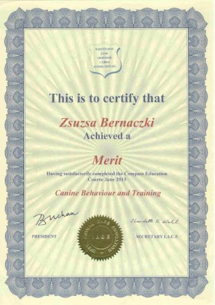 This is to certify that Zsuzsa Bernaczki Achieved a Merit Having satisfactorily completed the Compass Education Course June 2013 Canine Behaviour and Training