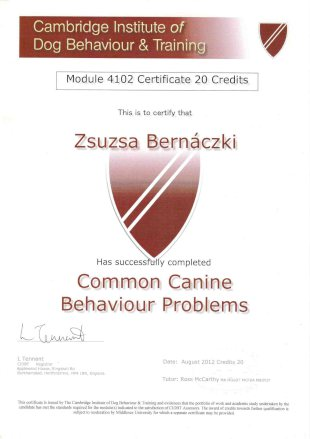 Cambridge Institute of Dog Behaviour and Training, Module 4102 Certificate 20 Credits, This is to certify that Zsuzsa Bernaczki Has succesfully completed Common Canine Behaviour Problems, Date: August 2012 Credits 20, Tutor: Ross McCarthy MA MGoDT MFCBA MBIPDT