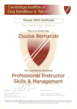 Cambridge Institute of Dog Behaviour and Training, Module 4005 Certificate, This is to certify that Zsuzsa Bernaczki Has succesfully completed Professional Instructor Skills and Management, Date: October 2011, Centre Reference No. LGRMZB, Tutor: Lez Graham and Ross McCarthy