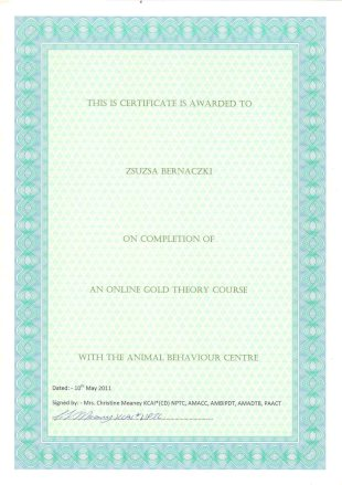 This IS Certificate is awarded to Zsuzsa Bernaczki on Completion of an Online Gold Theory Course with the Animal Behaviour Centre, Dated: 10th May 2011, Signed by: Mrs. Christine Meaney KCAI*(CD) NPTC, AMAACC, AMBIPDT, AMADTB, PAACT