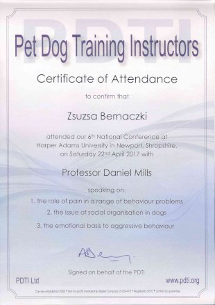 Pet Dog Training Instructors, Certificate of Attendance to confirm that Zsuzsa Bernaczki attended our 6th National Conference at Harper Adams University in Newport, Shropshire, on Saturday 22th April 2017 with Professor Daniel Mills speaking on: 1.the role of pain in a range of behaviour problems, 2. the issue of social organisation in dogs, 3. the emotional basis to aggressive behaviour.