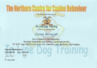 The Northern Centre for Canine Behaviour IN CONJUCTION WITH In Line Dog Training. This is to certify that Zsuzsa Bernaczki Has attended a John Rogerson - Working Trials Rally dog training course held on the 8th & 9th June 2019 at the Scout Hut, Edwards Lane, Bestwood, Nottingham. Course Instructors John Rogerson and Miya Guo (signatures) 9th June 2019
