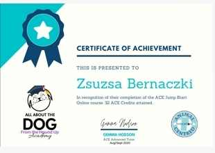 Certificate of Achievement, this is presented to Zsuzsa Bernaczki, in recognition of their compeltion of the ACE Jump Start Online course. 32 ACE Credits attained. All about the Dog from the Hound Up Academy, Gemma hodson (signature) ACE Advanced Tutor, Aug/Sep 2020