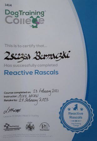 Dog Trainig College, This is to certify that... Zsuzsa Bernaczki has successfully completed Reactive Rascals. Course completed on: 28. February 2021, Instructor: Alex Wilson, Retake by: 27 February 2023, (signature) Leanne McWade, Head of Training