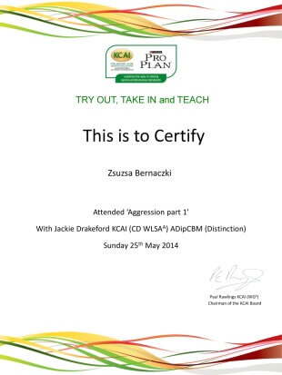 This is to Certify Zsuzsa Bernaczki Attended 'Aggression part 1' With Jackie Drakeford KCAI (CD WLSA a) ADipCBM (Distinction) Sunday 25th May 2014, (signature) Paul Rawlings KCAI (WG A) Chairman of the KCAI Board