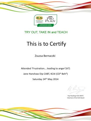 This is to Certify Zsuzsa Bernaczki Attended 'Frustration....leading to anger'(A7) Jane Hanshaw Dip CABT, KCAI (CD A Beh A) Satruday 24th May 2014, (signature) Paul Rawlings KCAI (WG A) Chairman of the KCAI Board