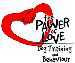 The logo of The Pawer of Love dog training and behaviour, a paw and a hand forming a heart with the name of the company
